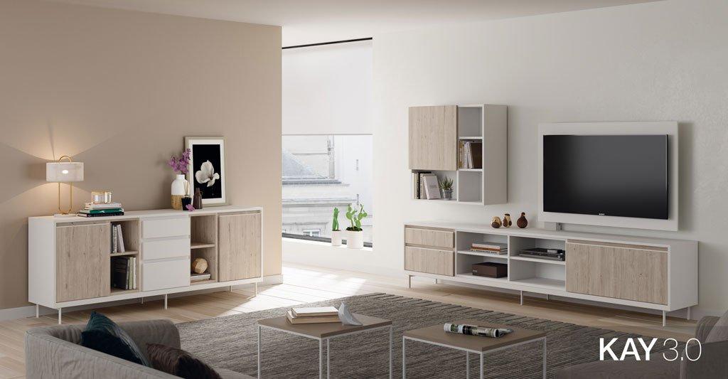 composicion-salon-moderno-mueble-TV-aparador-bajo-13